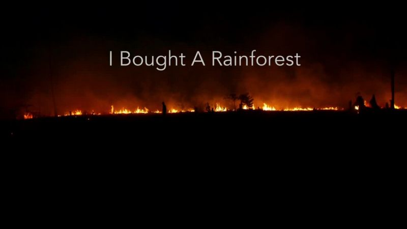 Image: I-Bought-a-Rainforest-Cover.jpg