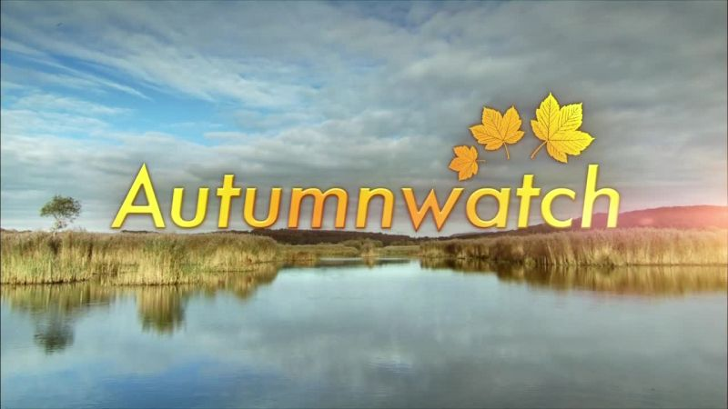 Image: Autumnwatch-2014-Cover.jpg