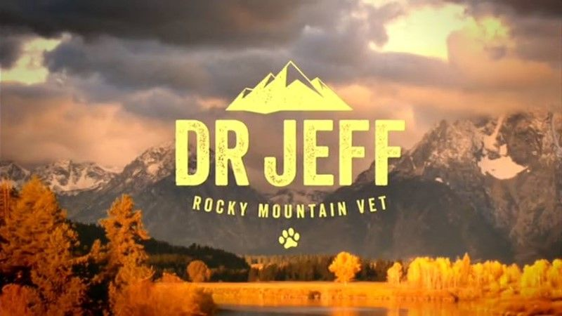 Image: Dr-Jeff-Rocky-Mountain-Vet-Series-1-Cover.jpg