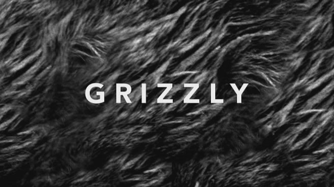 Image:Grizzly_Cover.jpg
