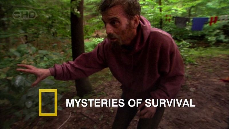 Image: Mysteries-of-Survival-Cover.jpg