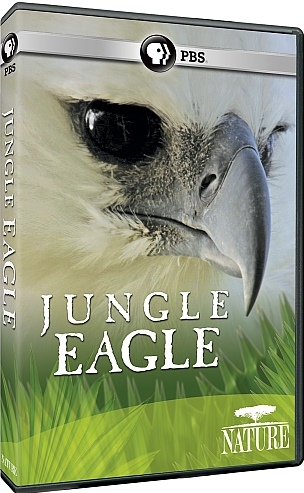 Image: Jungle-Eagle-Cover.jpg