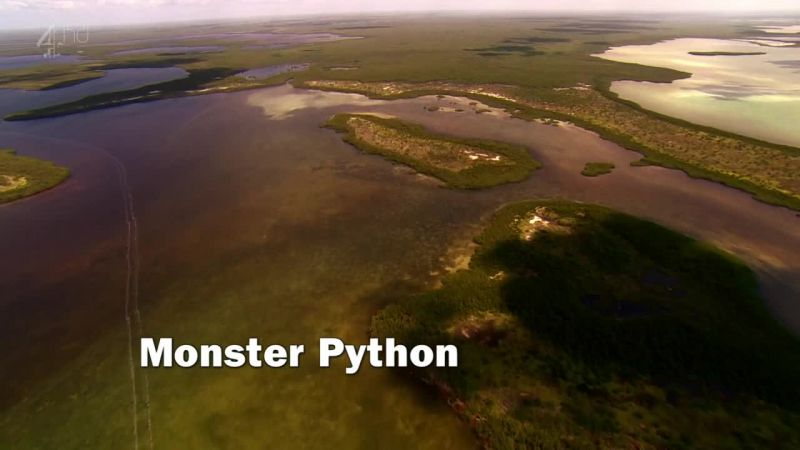 Image: Monster-Python-Ch4-Cover.jpg