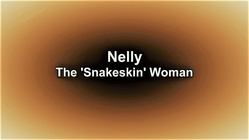 Image: Nelly-The-Snake-Skin-Woman-Cover.jpg