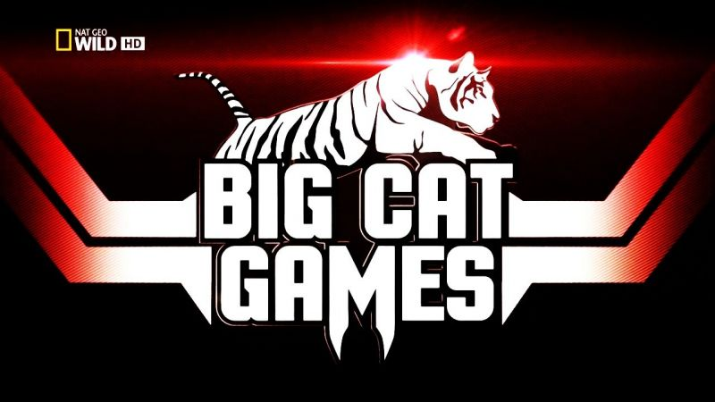 Image: Big-Cat-Games-Cover.jpg